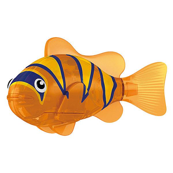 РобоРыбка Бычок, RoboFishРоборыбки<br>Тропическая РобоРыбка Бычок, ZURU (Зуру) – это высокотехнологичная инновационная игрушка, имитирующая движения и повадки рыбы в воде.<br>Тропическая РобоРыбка (Robofish)  Бычок сине-оранжевой окраски выглядит очень красиво и напоминает свою родственницу из теплых морей. Для РобоРыбки нужна только ёмкость с водой, и никакого ухода! Автоматический датчик, активирует рыбку в воде. Мягкий силиконовый хвост и электромагнитный мотор позволит ей двигаться в 5 различных направлениях: влево, вправо, вперед, вверх или вниз. Ультразвуковая герметизация на 100% защитит внутренности от проникновения воды. РобоРыбка повторяет повадки настоящих рыб: опускается на дно и всплывает на поверхность, сбивается в стаи с другими роборыбками, трется о стенки аквариума, меняет скорость движения, оплывает преграды. Внутри рыбки в крышке под батарейками находится специальный грузик, регулирующий глубину ее погружения. Для того, чтобы рыбка перестала двигаться нужно достать её из воды и насухо вытереть. Хранить РобоРыбку можно на специальной подставке, которая есть в комплекте. Игрушка выполнена из материалов абсолютно безопасных для здоровья.<br><br>Дополнительная информация:<br><br>- Возраст: для детей от 3 лет<br>- В комплекте: 1 рыбка, подставка, 4 батарейки (две установлены в игрушку и 2 запасные)<br>- Батарейки: тип RL44(A76)<br>- Размер рыбки: 7,5 x 2,0 x 3,5 см.<br>- Материал: пластик с элементами металла и резины<br>- Вес в упаковке: 72 г.<br>- Размер упаковки: 20 x 6,5 x 5 см.<br><br>Тропическая РобоРыбка (Робофиш) Бычок, ZURU (Зуру) - заведите себе аквариум, обитатели которого порадуют и развлекут Вас своими забавными повадками и при этом совсем не потребуют никакого ухода!<br><br>Тропическую РобоРыбку Бычок, ZURU (Зуру) можно купить в нашем интернет-магазине.<br>Ширина мм: 435; Глубина мм: 240; Высота мм: 405; Вес г: 216; Возраст от месяцев: 48; Возраст до месяцев: 96; Пол: Унисекс; Возраст: Детский; SKU: 3609991;
