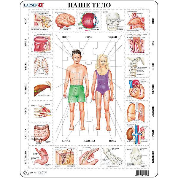 Larsen Пазл Наше тело, Larsen, 35 деталей beleduc развивающий пазл яблоко 30 деталей