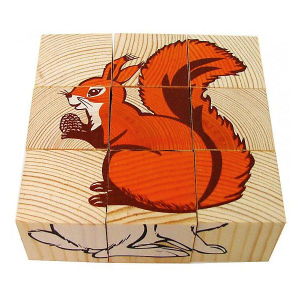 Томик Кубики Животные леса, 9 штук,