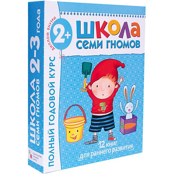 Мозаика-Синтез Полный годовой курс (12 книг) 2-3 лет, Школа Семи Гномов гном книга школа семи 0 1 год полный годовой курс с рождения