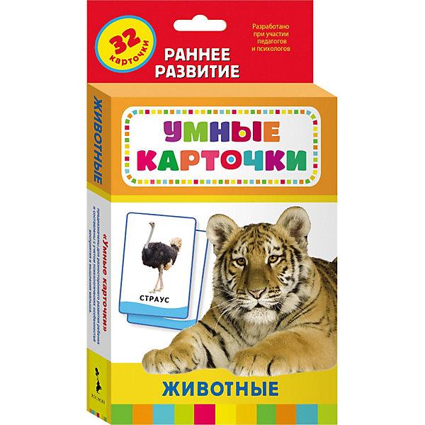 Купить Развивающие карточки Животные (0+), Умные карточки, Росмэн, Россия, Унисекс