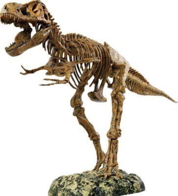 от динозавра до компота купить книгу