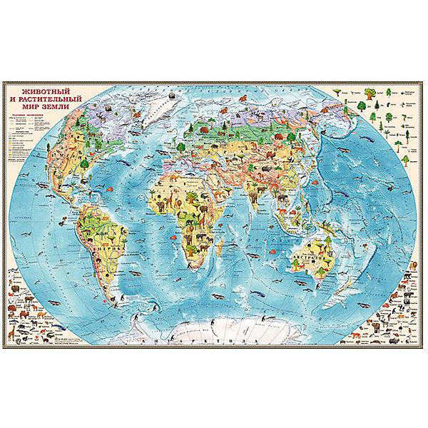 Издательство Ди Эм Би Двусторонняя настольная карта Обитатели Земли издательство ди эм би карта игра европа кругосветка
