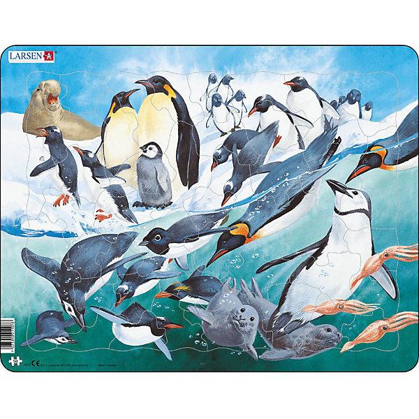 Larsen Пазл Пингвины, 50 элементов