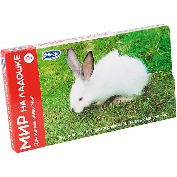Фото - Умница Мир на ладошке Домашние животные (выпуск 3) дикие животные мира мир домашних животных комплект из 2 книг