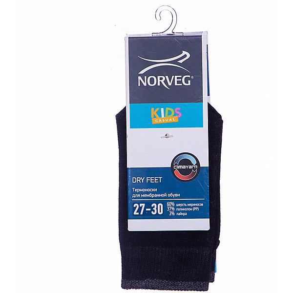 Купить Носки Norveg, Германия, серый, 27-30, Унисекс