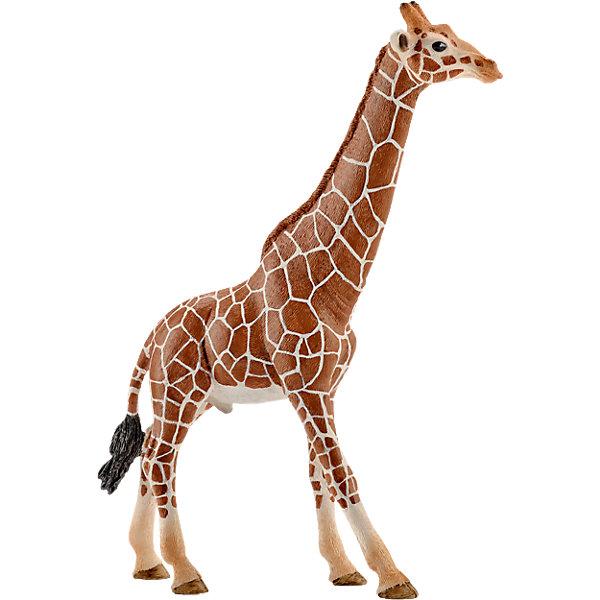 Коллекционная фигурка Schleich Дикие животные Жираф, самецМир животных<br>Характеристики:<br><br>• возраст: от 3 лет;<br>• материал: каучуковый пластик;<br>• размер игрушки: 12,7х4,4х17 см;<br>• вес упаковки: 120 гр.;<br>• размер упаковки: 12,7х4,4х17 см;<br>• страна бренда: Германия.<br><br>Фигурка от бренда Schleich – детализированная копия самца жирафа. Фигурка с точностью передает особенности строения тела животного, внешний вид шерсти, характерную позу.<br><br>В изготовлении каждой фигурки «Шляйх» учитываются рекомендации педагогики для того, чтобы игрушка была интересна и полезна ребенку, комфортно располагалась в руках. Фигурка раскрашена вручную, сделана из прочных безопасных материалов, не вызывающих аллергию. Разработано при участии Берлинского зоопарка.<br><br>Фигурка подойдет для сюжетно-ролевых игр, а также может стать частью большой коллекции реалистичных копий животных Schleich.<br><br>Фигурку Schleich Жираф, самец можно купить в нашем интернет-магазине.<br>Ширина мм: 266; Глубина мм: 71; Высота мм: 32; Вес г: 101; Возраст от месяцев: 36; Возраст до месяцев: 96; Пол: Унисекс; Возраст: Детский; SKU: 4394584;