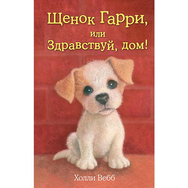 Купить Щенок Гарри, или Здравствуй, дом!, Эксмо, Россия, Унисекс