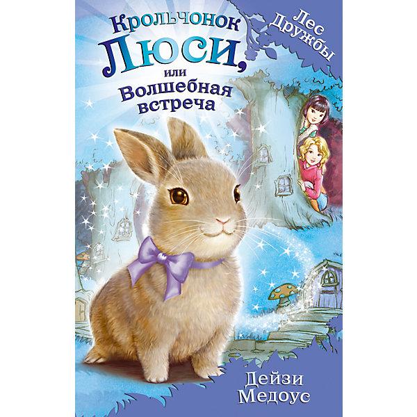 Фото - Эксмо Книга Крольчонок Люси, или Волшебная встреча, Дейзи Медоус медоус дейзи барсучонок лотти или потерянный сон