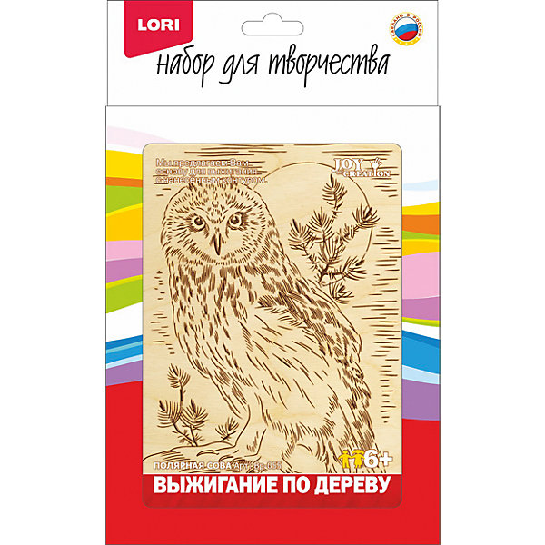 Купить Выжигание в рамке Полярная сова , LORI, Россия, Унисекс