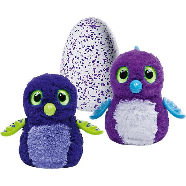 Дракончик Hatchimals, Spin Master, пурпурныйИнтерактивные мягкие игрушки<br>Характеристики товара:<br><br>- цвет: пурпурный;<br>- материал: пластик, текстиль;<br>- особенности: дракончик вылупляется - его нужно греть, кормить и воспитывать, он танцует, издает и повторяет звуки;<br>- интерактивная игрушка;<br>- размер упаковки:26х15х20 см;<br>- вес: 1000 г.<br><br>Такая симпатичная интерактивная игрушка не оставит ребенка равнодушным! Какой малыш откажется сам вырастить и воспитать дракончика?! Игрушка очень качественно выполнена, поэтому она станет отличным подарком ребенку. Когда питомец вырастет - не перестанет удивлять! Такой дракончик отлично тренирует у ребенка навык заботы о других и ответственность. С дракончиком можно придумать множество сюжетов, разыгрывая которые, ребенок развивает мелкую моторику, воображение и творческое мышление.<br>Изделие произведено из высококачественного материала, безопасного для детей.<br><br>Дракончик Hatchimals, Spin Master, можно купить в нашем интернет-магазине.<br>Ширина мм: 257; Глубина мм: 210; Высота мм: 149; Вес г: 930; Возраст от месяцев: 60; Возраст до месяцев: 120; Пол: Женский; Возраст: Детский; SKU: 4662760;