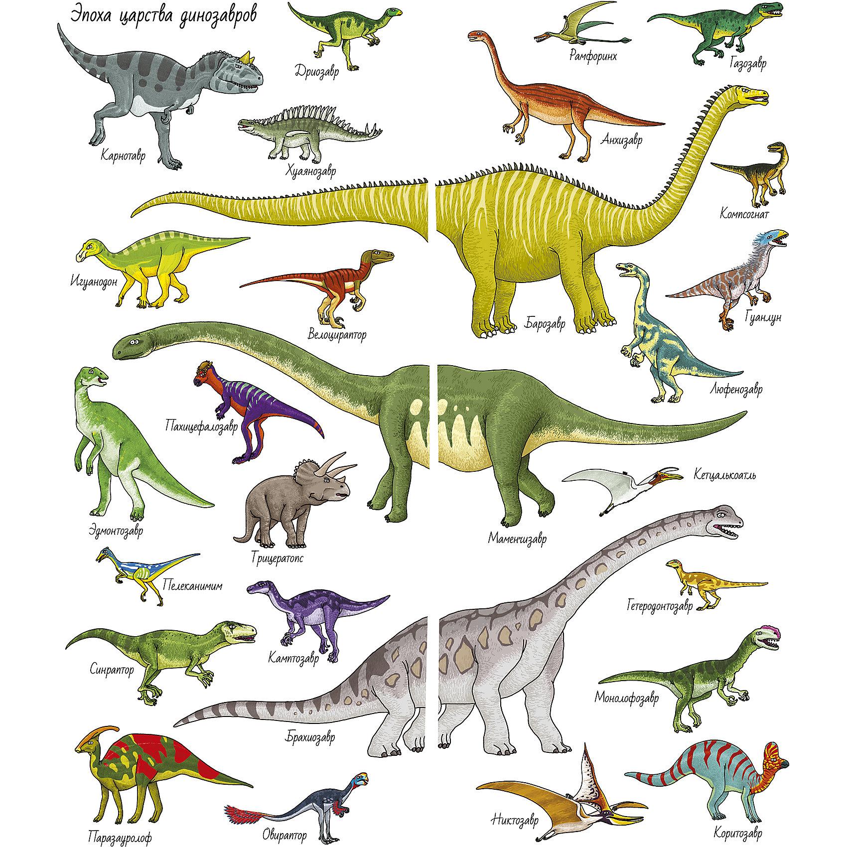 картинки динозавры и их как зовут бодибилдеров, несмотря то
