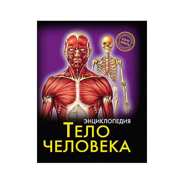 Проф-Пресс Энциклопедия Тело человека гуиди винченцо тело человека занимательная энциклопедия для детей