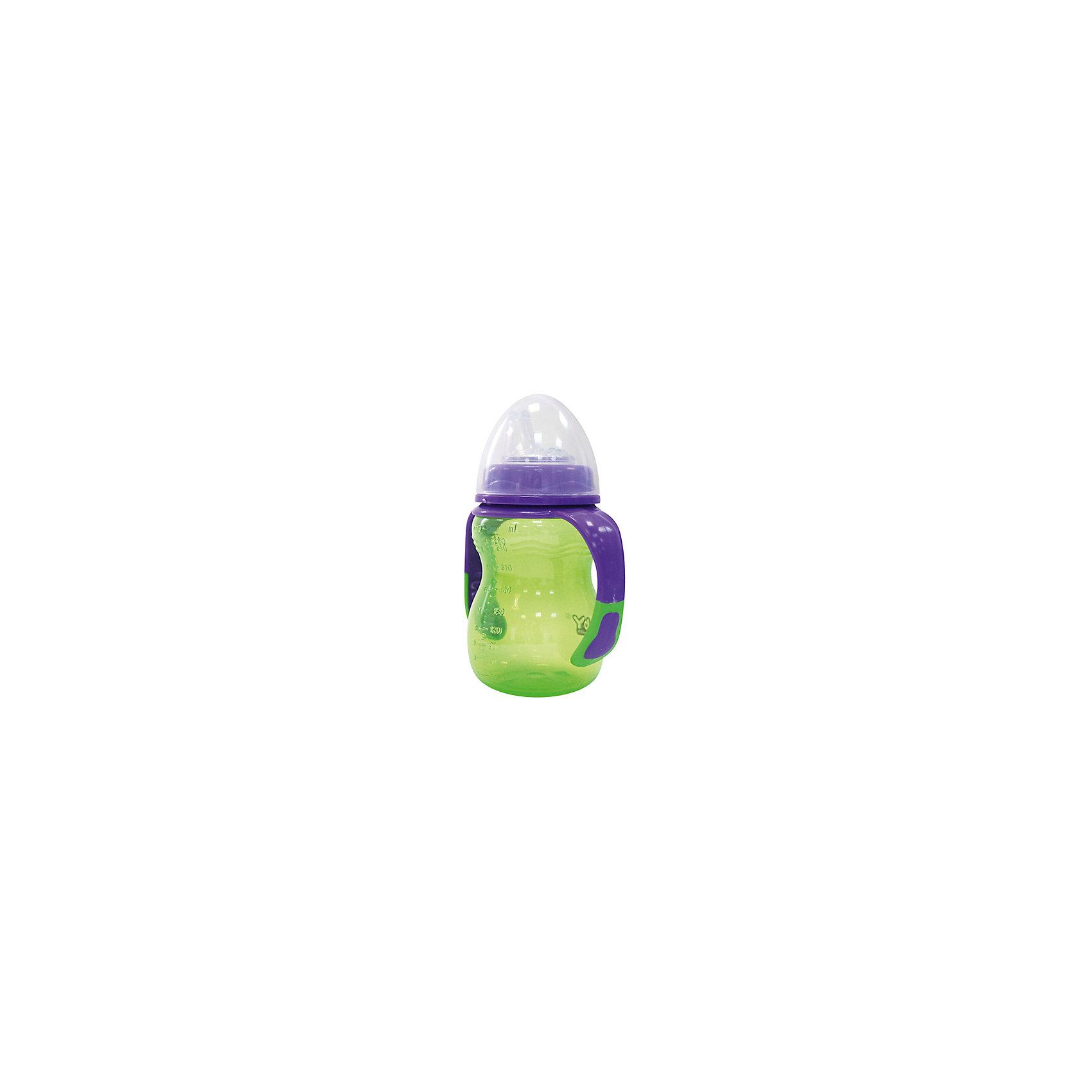Поильник-непроливайка Классика от 6 мес. 250 мл., LUBBY, зеленый/фиолетовый