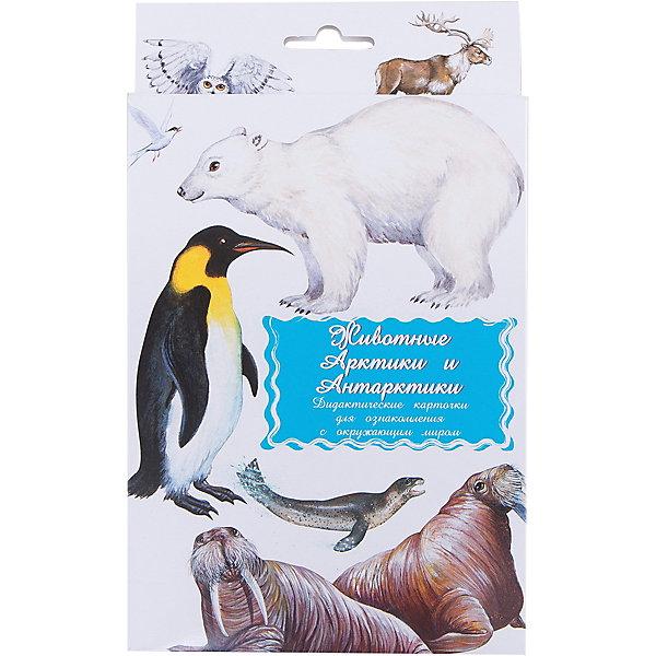 Дидактические карточки Животные Арктики и АнтарктикиОбучающие карточки<br>Тематические комплекты дидактических карточек помогут познакомить ребенка с окружающим миром, развить речевые умения, научить сравнивать, классифицировать, обобщать. Карточки рекомендуются родителям для познавательных игр с детьми и занятий  по методике Г.Домана.  Могут использоваться в индивидуальной и групповой работе логопедами, психологами, воспитателями детских садов, учителями начальных классов.  В каждом комплекте 16 карточек, каждая из которых содержит интересную познавательную информацию об изображенном на ней предмете.<br>Ширина мм: 150; Глубина мм: 90; Высота мм: 90; Вес г: 200; Возраст от месяцев: 36; Возраст до месяцев: 2147483647; Пол: Унисекс; Возраст: Детский; SKU: 4802972;
