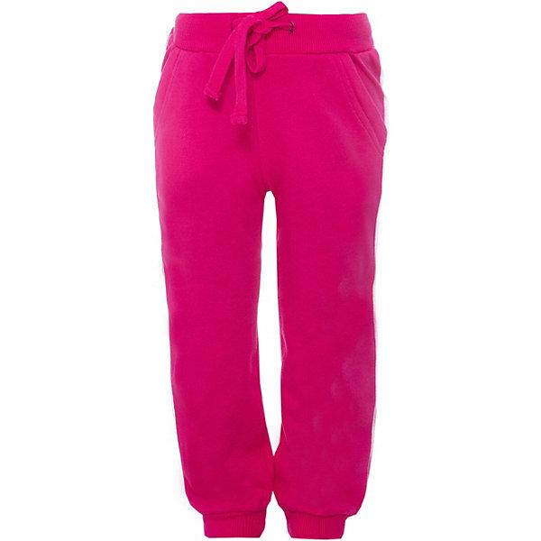 Брюки для девочки PlayTodayБрюки<br>Брюки для девочки от известного бренда PlayToday.<br>Яркие розовые брюки из футера в спортивном стиле. Пояс на резинке, дополнительно регулируется шнурком. По бокам лампасы. Есть два функциональных кармана. Низ шианишек на трикотажной резинке.<br>Состав:<br>80% хлопок, 20% полиэстер<br>Ширина мм: 215; Глубина мм: 88; Высота мм: 191; Вес г: 336; Цвет: розовый; Возраст от месяцев: 24; Возраст до месяцев: 36; Пол: Женский; Возраст: Детский; Размер: 98,104,122,116,110,140,134,128; SKU: 4897782;