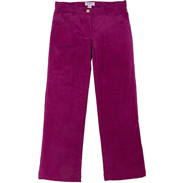 Брюки для девочки PlayTodayБрюки<br>Брюки для девочки от известного бренда PlayToday.<br>брюки из эластичного велюра - стильный и практичный атрибут нарядов современной модницы <br>• модель на трикотажной подкладке <br>• брюки на поясе с внутренней резинкой <br>• функциональные карманы <br>• застежка - болт и молния<br>Состав:<br>верх: 98% хлопок, 2% эластан,<br>подкладка: 100% хлопок<br>Ширина мм: 215; Глубина мм: 88; Высота мм: 191; Вес г: 336; Цвет: красный; Возраст от месяцев: 24; Возраст до месяцев: 36; Пол: Женский; Возраст: Детский; Размер: 98,104,122,116,110,128; SKU: 4900193;