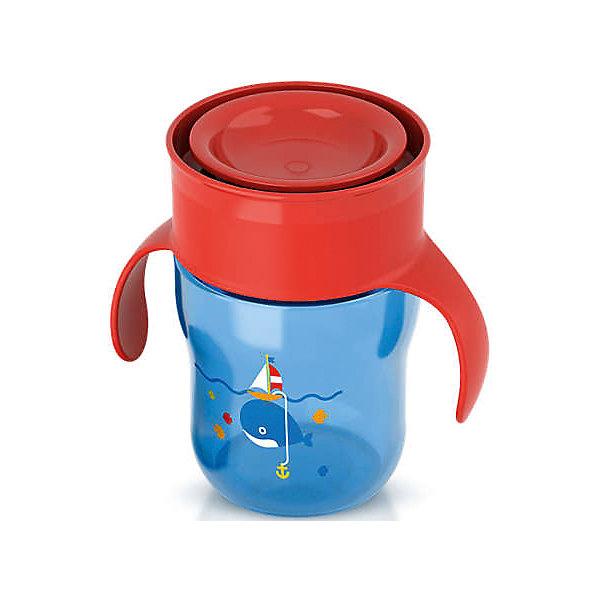 Чашка-поильник с ручками, с 12 мес., 260 мл., Philips Avent, синий/красныйПоильники<br>Описание SCF782/20:<br>-Новая чашка для питья Philips AVENT поможет Вашему малышу научиться пить самостоятельно, как из взрослой чашки.Уникальный клапан с защитой от протекания открывается от прикосновения губ, при этом пить можно по всему краю, словно это обычная чашка.Не содержит бисфенол-А (0% BPA).Когда ребенок только начнет пользоваться чашкой, возможно, напитки будут проливаться; это нормально, так как ребенку нужно некоторое время, чтобы привыкнуть к чашке. Для быстрого обучения навыкам питья из чашки мы рекомендуем использовать ее каждый день. Для формирования данного навыка ребенку может потребоваться от нескольких недель до нескольких месяцев. Это зависит от того, как часто вы используете чашку, возраста ребенка и от самого ребенка. Рекомендовано для детей от 12 мес+.<br><br>Результат: <br>Приятное и комфортное питье. С помощью этой чашки Вы сможете легко научить ребенка пользоваться обычной чашкой: малыш может пить по всему краю, как из обычной чашки для взрослых.<br>Удобство в использовании для мамы: чашку  удобно мыть и наполнять. Небольшое количество деталей позволяет быстро ее собрать и разобрать.<br>Ширина мм: 150; Глубина мм: 70; Высота мм: 70; Вес г: 250; Возраст от месяцев: 12; Возраст до месяцев: 36; Пол: Мужской; Возраст: Детский; SKU: 4912898;