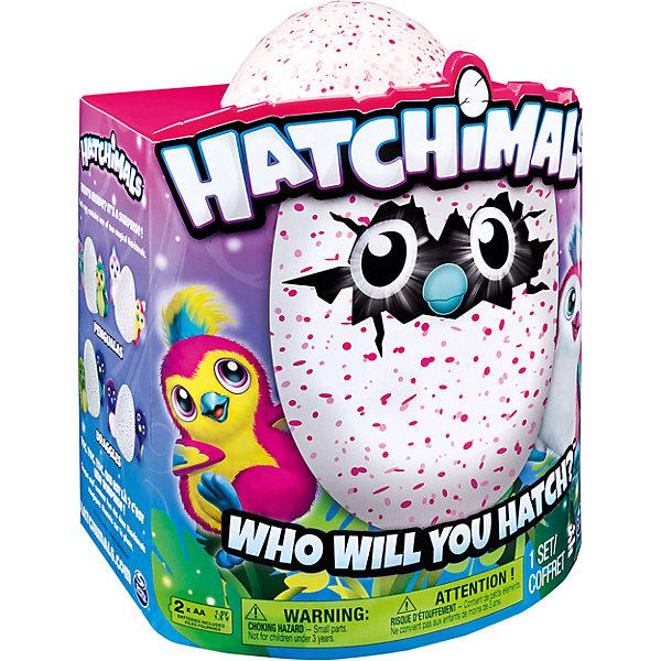 Купить Пингвинчик Hatchimals, Spin Master, розовый, Китай, Унисекс