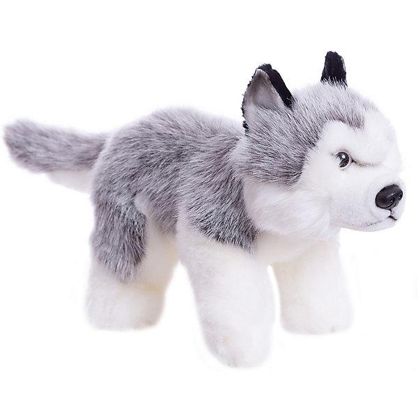 Купить Мягкая игрушка Hansa Собаки Щенок Хаски, 25 см, Филиппины, Унисекс