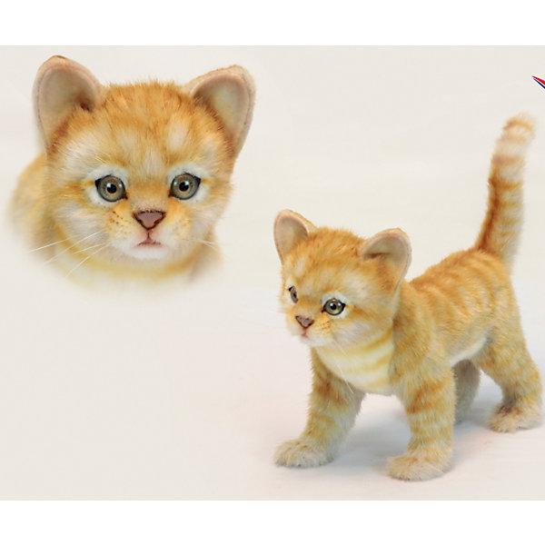 Котёнок стоящий рыжий, 30 смМягкие игрушки животные<br>Котёнок стоящий рыжий, 30 см – игрушка от знаменитого бренда Hansa, специализирующегося на выпуске мягких игрушек с высокой степенью натуралистичности. Внешний вид игрушечного котенка полностью соответствует своему реальному прототипу. Он выполнен из искусственного меха с ворсом средней длины. Окрас игрушки имитирует окрас настоящего животного: рыжий и полосатый. Использованные материалы обладают гипоаллергенными свойствами. Внутри игрушки имеется металлический каркас, позволяющий изменять положение. <br>Игрушка относится к серии Домашние животные. <br>Мягкие игрушки от Hansa подходят для сюжетно-ролевых игр, для обучающих игр, направленных на знакомство с миром живой природы. Кроме того, их можно использовать в качестве интерьерных игрушек. Представленные у торгового бренда разнообразие игрушечных кошек позволяет собрать свою коллекцию пород, которая будет радовать вашего ребенка долгое время, так как ручная работа и качественные материалы гарантируют их долговечность и прочность.<br><br>Дополнительная информация:<br><br>- Вид игр: сюжетно-ролевые игры, коллекционирование, интерьерные игрушки<br>- Предназначение: для дома, для детских развивающих центров, для детских садов<br>- Материал: искусственный мех, наполнитель ? полиэфирное волокно<br>- Размер (ДхШхВ): 30*23*14 см<br>- Вес: 780 г<br>- Особенности ухода: сухая чистка при помощи пылесоса или щетки для одежды<br><br>Подробнее:<br><br>• Для детей в возрасте: от 3 лет <br>• Страна производитель: Филиппины<br>• Торговый бренд: Hansa<br><br>Котёнка стоящего рыжего, 30 см можно купить в нашем интернет-магазине.