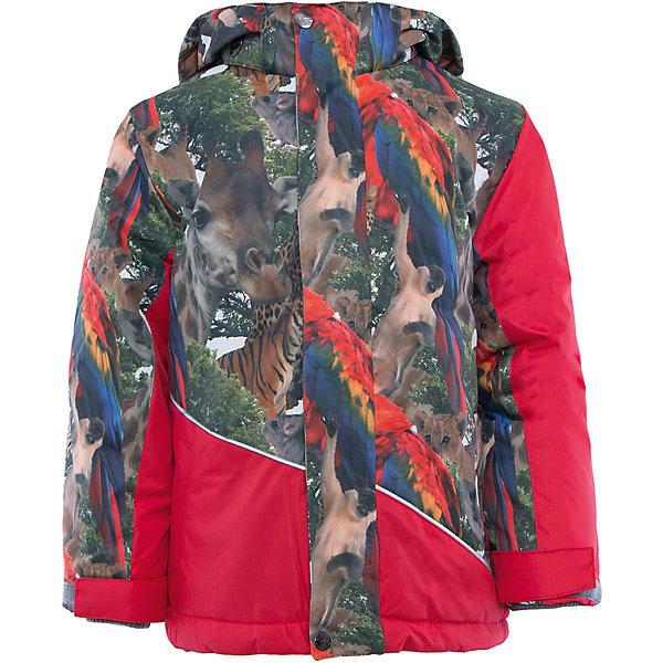 Куртка Huppa Alex, Эстония