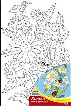 Холст с красками  по номерам Полевые ромашки, 20х30 см