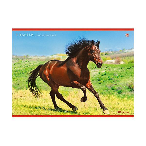 Альбом для рисования Благородный конь, 20лАльбомы и бумага для рисования<br>Альбом для рисования Благородный конь  - незаменимый помощник начинающим художникам. Удобное крепление и плотные страницы превратят процесс рисования в увлекательное и интересное занятие. Художественное творчество развивает внимание, усидчивость и воображение.<br><br>Дополнительная информация:<br>Внутренний блок: офсет 110 г/м2<br>Обложка: мелованный картон.<br>Количество листов: 20<br>Формат: А4<br>Крепление: склейка<br>Альбом для рисования Благородный конь вы можете приобрести в нашем интернет-магазине.<br>Ширина мм: 210; Глубина мм: 297; Высота мм: 8; Вес г: 147; Возраст от месяцев: 72; Возраст до месяцев: 144; Пол: Унисекс; Возраст: Детский; SKU: 4942429;