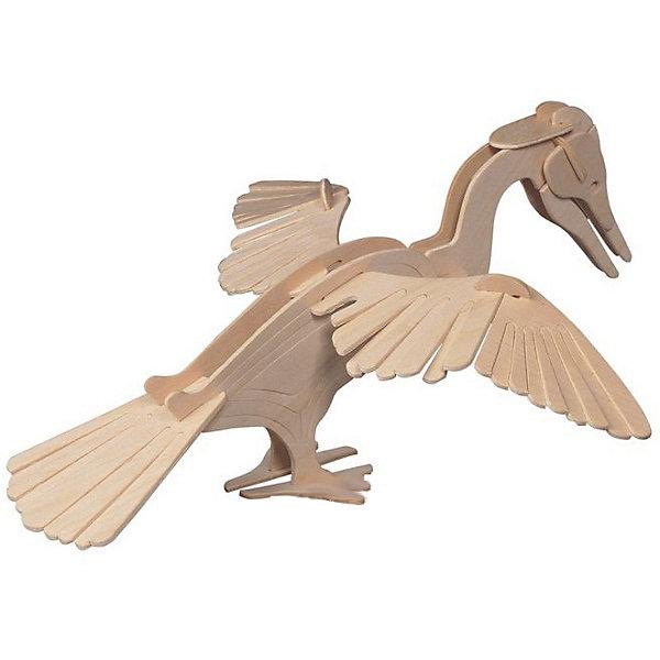 Змеешейка, Мир деревянных игрушекДеревянные модели<br>Сделать деревянную игрушку самому - какой ребенок откажется от этого?! Специально для любящих творчество и интересующихся животным миром были разработаны эти 3D-пазлы. Из них получаются красивые очень реалистичные фигуры, которые могут стать украшением комнаты.<br>Собирая их, ребенок будет учиться соотносить фигуры, развивать пространственное мышление, память и мелкую моторику. А раскрашивая готовое произведение, дети научатся подбирать цвета и будут развивать художественные навыки. Этот набор произведен из качественных и безопасных для детей материалов - дерево тщательно обработано.<br><br>Дополнительная информация:<br><br>материал: дерево;<br>цвет: бежевый;<br>элементы: две пластины с деталями для сборки;<br>размер упаковки: 24 х 19 х 1 см.<br><br>3D-пазл Змеешейка от бренда Мир деревянных игрушек можно купить в нашем магазине.<br>Ширина мм: 220; Глубина мм: 30; Высота мм: 180; Вес г: 100; Возраст от месяцев: 36; Возраст до месяцев: 144; Пол: Унисекс; Возраст: Детский; SKU: 4969024;