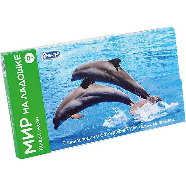 Умница Мир на ладошке Живой океан (выпуск 1) большой плакат живой мир океана живой мир саванны 1522200000172