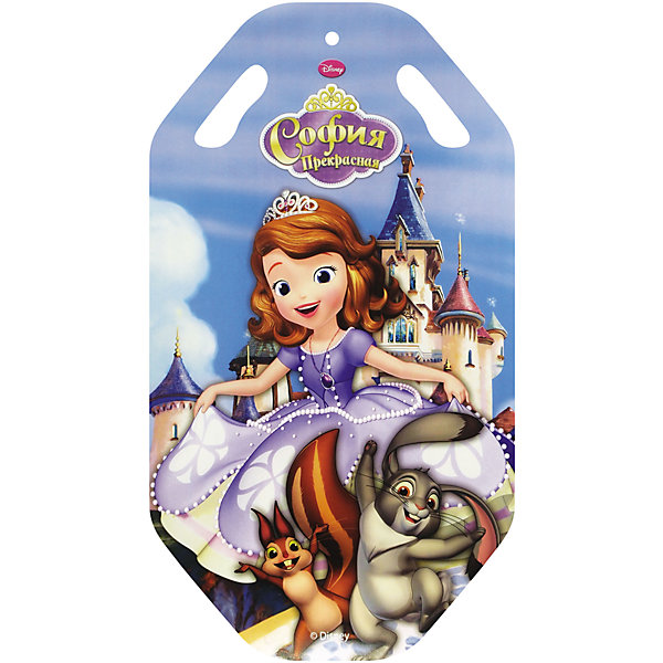 цена Disney Ледянка