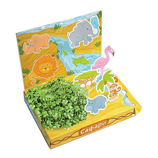 Набор для выращивания Сафари, Happy PlantВыращивание растений<br>Детский развивающий набор для выращивания Сафари, Happy Plant.<br><br>Характеристики:<br><br>• возможность вырастить настоящую травку, не выходя из дома<br>• прост в использовании<br>• подходит в качестве подарка<br>• безопасные материалы<br>• гарантия качества<br>• в комплекте: наклейки, 3 фигурки, семена, контейнер для растений, агроткань<br>• размер упаковки: 15х11х2,5 см<br>• вес: 30 грамм<br><br>Набор для выращивания Сафари станет прекрасным подарком для ребенка. В процессе игры ребенок научит названия некоторых животных, научится выращивать растения и ухаживать за ними. Семена растут на специальной агроткани, их требует поливать каждый день. Через несколько дней контейнер с фигурками будет украшен красивым мини-садиком. Этот набор отлично подойдет для знакомства с живой природой!<br><br>Детский развивающий набор для выращивания Сафари, Happy Plant вы можете купить в нашем интернет-магазине.