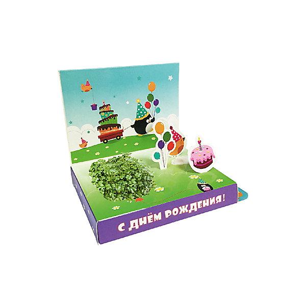 Бумбарам Подарочный набор для выращивания С Днем рождения - Пингвин Happy Plant арт дизайн подарочный набор открытка с ручкой 0701 051