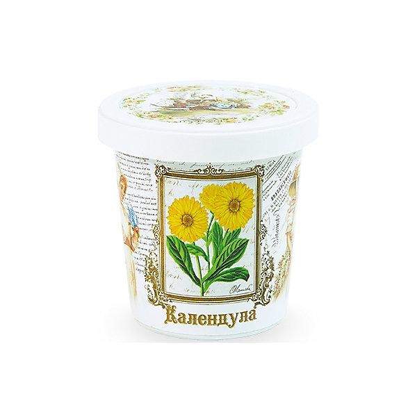 Набор для выращивания Календула Rostok VisaВыращивание растений<br>Календула, Rostok Visa.<br><br>Характеристики:<br><br>• вы сможете выращивать растения у себя дома<br>• экологически чистая продукция<br>• не содержит химикаты<br>• отличная всхожесть<br>• приятный дизайн<br>• в комплекте: горшочек, пакет с семенами, грунт, инструкция<br>• размер упаковки: 7,5х7,5х12 см<br>• вес: 275 грамм<br><br>Набор Календула подойдет для любителей садоводства. С его помощью ребенок научится выращивать календулу и ухаживать за ней. Прочитав инструкцию, вы узнаете как именно нужно ухаживать за растением. Процесс выращивания понравится ребенку, а взрослое растение в оригинальном горшочке украсит вашу комнату!<br><br>Набор Календула, Rostok Visa вы можете купить в нашем интернет-магазине.<br>Ширина мм: 120; Глубина мм: 75; Высота мм: 75; Вес г: 267; Возраст от месяцев: 168; Возраст до месяцев: 240; Пол: Унисекс; Возраст: Детский; SKU: 5053979;