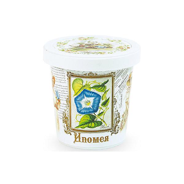 Набор для выращивания Ипомея Rostok VisaВыращивание растений<br>Ипомея, Rostok Visa.<br><br>Характеристики:<br><br>• вы сможете выращивать растения у себя дома<br>• экологически чистая продукция<br>• не содержит химикаты<br>• отличная всхожесть<br>• приятный дизайн<br>• в комплекте: горшочек, пакет с семенами, грунт, инструкция<br>• размер упаковки: 7,5х7,5х12 см<br>• вес: 275 грамм<br><br>Набор Ипомея подойдет для любителей садоводства. С его помощью ребенок научится выращивать ипомею и ухаживать за ней. Прочитав инструкцию, вы узнаете как именно нужно ухаживать за растением. Процесс выращивания понравится ребенку, а взрослое растение в оригинальном горшочке украсит вашу комнату!<br><br>Набор Ипомея, Rostok Visa вы можете купить в нашем интернет-магазине.<br>Ширина мм: 120; Глубина мм: 75; Высота мм: 75; Вес г: 267; Возраст от месяцев: 168; Возраст до месяцев: 240; Пол: Унисекс; Возраст: Детский; SKU: 5053984;
