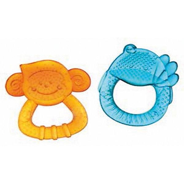 Набор прорезывателей Приятели, 2 шт, BKidsПустышки<br>Характеристики:<br><br>• комплект прорезывателей;<br>• рельефная поверхность игрушек;<br>• выполнены в виде обезьянки и птички;<br>• подходят для массажирования десен;<br>• в наборе 2 шт.;<br>• не замораживать;<br>• материал: полипропилен;<br>• не содержит бисфенол-А.<br><br>Прорезыватели «Садовые друзья» используются на этапе прорезывания первых зубок малыша. Изготовлены из полипропилена. Игрушки можно охладить: для этого поместите прорезыватели в холодильник на 10-15 минут, затем предложите малышу. <br> <br>Набор прорезывателей Приятели, 2 шт, BKids можно купить в нашем интернет-магазине.<br>Ширина мм: 38; Глубина мм: 38; Высота мм: 203; Вес г: 99; Возраст от месяцев: 0; Возраст до месяцев: 36; Пол: Унисекс; Возраст: Детский; SKU: 5055390;