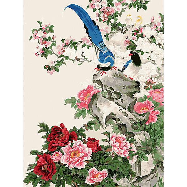 Белоснежка Живопись на холсте Райские птицы 30*40 см набор для творчества хансибэг живопись на холсте 40 50см пионы в букете