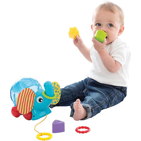 Сортер Playgro «Слоник»Сортеры<br>Характеристики товара:<br><br>• возраст: от 6 месяцев;<br>• материал: пластик;<br>• в комплекте: сортер-слоник, 3 колечка, 3 фигуры;<br>• размер упаковки: 20х19х14 см;<br>• вес упаковки: 508 гр.<br><br>Сортер Playgro «Слоник» - развивающая игрушка для малышей, которая может использоваться как сортер, и как каталка на веревочке. Сортер в виде слоника оснащен колесиками, веревочкой и кольцами, за которые можно возить игрушку по полу. Во время движения шар на спинке вращается.<br><br>На шаре имеется 3 отверстия разной геометрической формы. На 3 фигуры нанесены цифры от 1 до 3. Задача малыша подобрать фигурку в соответствующее отверстие.<br><br>Игрушка выполнена из качественных безопасных материалов. Способствует развитию мышления, мелкой моторики рук, учит ребенка распознавать цвета и фигуры.<br><br>Сортер Playgro «Слоник» можно приобрести в нашем интернет-магазине.<br>Ширина мм: 220; Глубина мм: 200; Высота мм: 147; Вес г: 471; Возраст от месяцев: 12; Возраст до месяцев: 36; Пол: Унисекс; Возраст: Детский; SKU: 5093535;