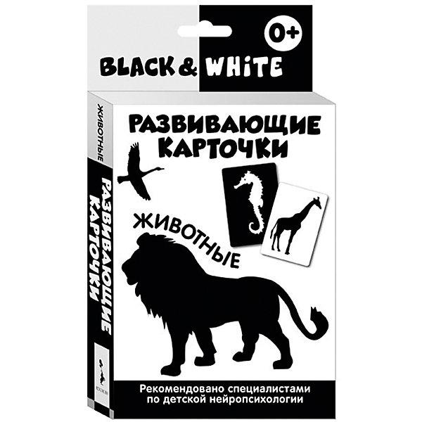 Развивающие карточки Black &amp; White. ЖивотныеОзнакомление с окружающим миром<br>Характеристики товара:<br><br>- цвет: черно-белый;<br>- материал: бумага;<br>- количество карточек: 16;<br>- формат: 20,0 x 11,2 см;<br>- возраст: 0+;<br>- обложка: картонная коробка.<br><br>Развивающие карточки – отличный вариант для раннего обучения ребенка и дальнейшей его подготовке школе. Набор тренирует зрительную память и восприятие. Комплект содержит 16 карточек с контрастными изображениями из картона. В наборе есть инструкция для родителей, разработанная специализированными нейропсихологами. Все материалы, использованные при производстве издания, соответствуют всем стандартам качества и безопасности. <br><br>Издание Развивающие карточки Black &amp; White. Животные от компании Росмэн можно приобрести в нашем интернет-магазине.<br>Ширина мм: 200; Глубина мм: 112; Высота мм: 20; Вес г: 220; Возраст от месяцев: 0; Возраст до месяцев: 36; Пол: Унисекс; Возраст: Детский; SKU: 5109863;