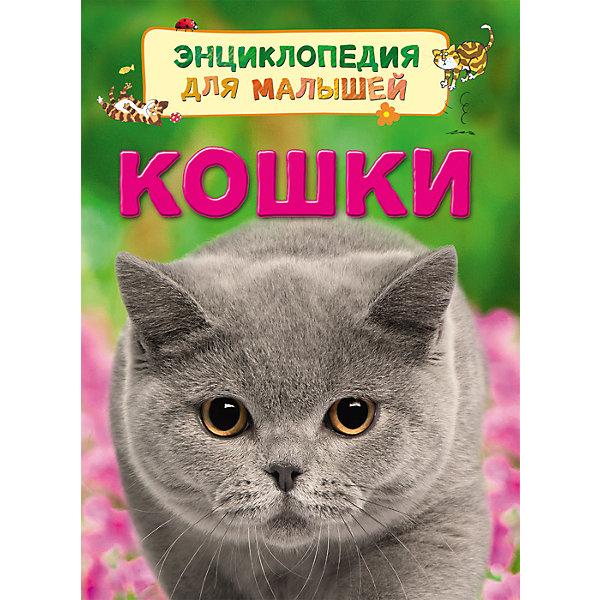 Кошки (Энциклопедия для малышей)Энциклопедии о животных<br>Характеристики товара:<br><br>- цвет: разноцветный;<br>- материал: бумага;<br>- страниц: 32;<br>- формат: 22 х 17 см;<br>- обложка: твердая;<br>- цветные иллюстрации.<br><br>Эта интересная книга с иллюстрациями станет отличным подарком для ребенка. Она содержит в себе ответы на вопросы, которые интересуют малышей. Всё представлено в очень простой форме! Талантливый иллюстратор дополнил книгу качественными рисунками, которые помогают ребенку понять суть многих вещей в нашем мире. Удивительные и интересные факты помогут привить любовь к учебе!<br>Чтение - отличный способ активизации мышления, оно помогает ребенку развивать зрительную память, концентрацию внимания и воображение. Издание произведено из качественных материалов, которые безопасны даже для самых маленьких.<br><br>Книгу Кошки (Энциклопедия для малышей) от компании Росмэн можно купить в нашем интернет-магазине.<br>Ширина мм: 220; Глубина мм: 167; Высота мм: 7; Вес г: 190; Возраст от месяцев: 36; Возраст до месяцев: 72; Пол: Унисекс; Возраст: Детский; SKU: 5109959;
