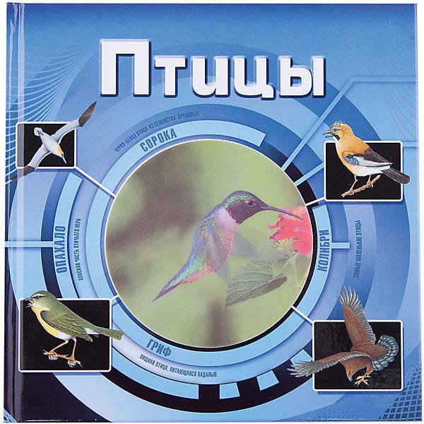 ПтицыЭнциклопедии о животных<br>Характеристики товара:<br><br>- цвет: разноцветный;<br>- материал: бумага;<br>- страниц: 64;<br>- формат: 20 x 20 см;<br>- обложка: твердая;<br>- цветные иллюстрации.<br><br>Эта интересная книга с иллюстрациями станет отличным подарком для ребенка. Она содержит в себе ответы на вопросы, которые интересуют малышей. Всё представлено в очень простой форме! Талантливый иллюстратор дополнил книгу качественными рисунками, которые помогают ребенку понять суть многих вещей в нашем мире. Удивительные и интересные факты помогут привить любовь к учебе!<br>Чтение - отличный способ активизации мышления, оно помогает ребенку развивать зрительную память, концентрацию внимания и воображение. Издание произведено из качественных материалов, которые безопасны даже для самых маленьких.<br><br>Книгу Птицы (3D) от компании Росмэн можно купить в нашем интернет-магазине.<br>Ширина мм: 205; Глубина мм: 200; Высота мм: 10; Вес г: 350; Возраст от месяцев: 84; Возраст до месяцев: 108; Пол: Унисекс; Возраст: Детский; SKU: 5109994;