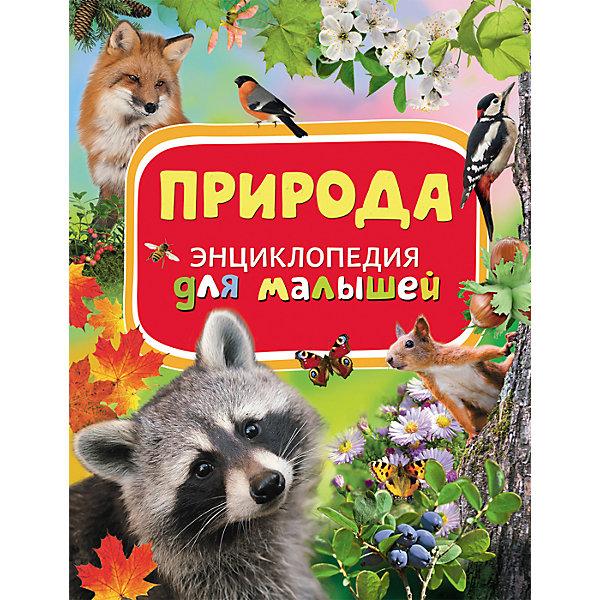 Природа, Энциклопедия для малышейОзнакомление с окружающим миром<br>Характеристики товара:<br><br>- цвет: разноцветный;<br>- материал: бумага;<br>- страниц: 88;<br>- формат: 22 х 29 см;<br>- обложка: твердая;<br>- цветные иллюстрации.<br><br>Эта интересная книга с иллюстрациями станет отличным подарком для ребенка. Она содержит в себе ответы на вопросы, которые интересуют малышей. Всё представлено в очень простой форме! Талантливый иллюстратор дополнил книгу качественными рисунками, которые помогают ребенку понять суть многих вещей в нашем мире. Удивительные и интересные факты помогут привить любовь к учебе!<br>Чтение - отличный способ активизации мышления, оно помогает ребенку развивать зрительную память, концентрацию внимания и воображение. Издание произведено из качественных материалов, которые безопасны даже для самых маленьких.<br><br>Книгу Природа, Энциклопедия для малышей  от компании Росмэн можно купить в нашем интернет-магазине.<br>Ширина мм: 282; Глубина мм: 217; Высота мм: 10; Вес г: 478; Возраст от месяцев: 36; Возраст до месяцев: 72; Пол: Унисекс; Возраст: Детский; SKU: 5110002;