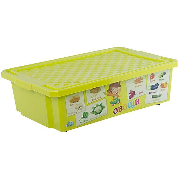 Little Angel Ящик для хранения игрушек X-BOX Обучайка Овощи-фрукты 30л, Little Angel, салатовый little angel ящик для игрушек x box малышарики 17 л