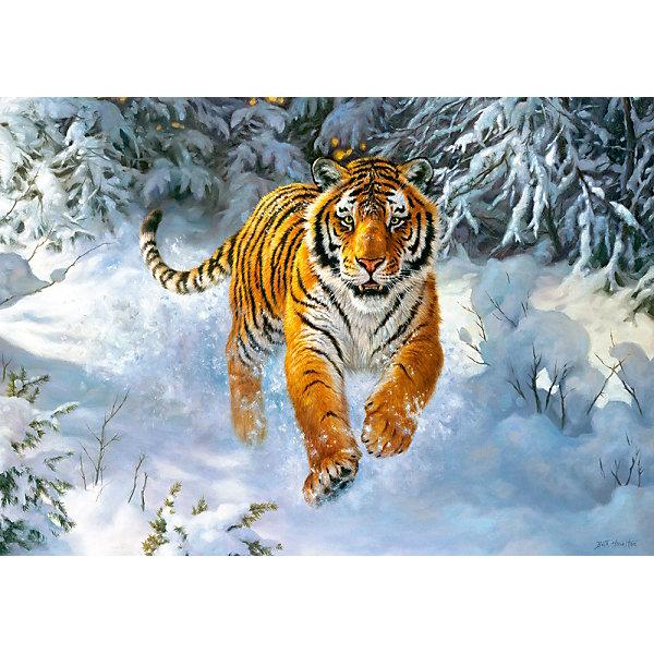 Пазл Амурский тигр, 500 деталей, CastorlandПазлы классические<br>Пазл Амурский тигр, 500 деталей, Castorland, (Касторленд)<br><br>Характеристики:<br><br>• большая красивая картинка<br>• количество деталей: 500<br>• устойчив к выцветанию<br>• размер пазла: 47х33 см<br>• вес: 100 грамм<br>• размер упаковки: 32х22х4,7 см<br><br>С помощью набора от Касторленд ваш ребенок сможет создать яркую картинку, изображающую Амурского тигра, бегущего по снегу. В набор входят 500 деталей из плотного картона, устойчивого к выцветанию и повреждениям. Детали легко соединяются друг с другом. Собирание пазлов способствует развитию мелкой моторики, логического и пространственного мышления, а также усидчивости. Готовая картинка украсит комнату и, конечно же, порадует ребенка!<br><br>Пазл Амурский тигр, 500 деталей, Castorland, (Касторленд) можно купить в нашем интернет-магазине.<br>Ширина мм: 320; Глубина мм: 47; Высота мм: 220; Вес г: 500; Возраст от месяцев: 72; Возраст до месяцев: 2147483647; Пол: Унисекс; Возраст: Детский; SKU: 5244664;