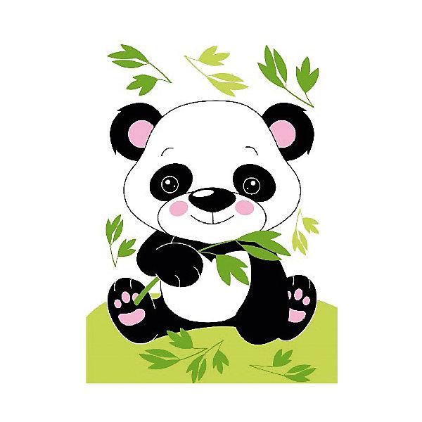 Molly Набор юного художника Маленькая панда, 20*30 см панда 30 см