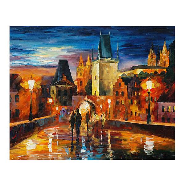 Molly Картина по номерам Афремов: Ночь в Праге, 40*50 см tukzar роспись по номерам тигры 40 50 см
