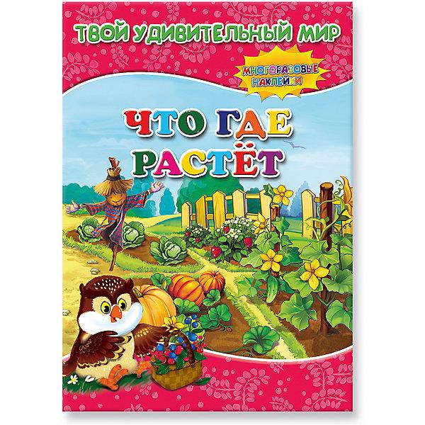 ГеоДом Книжка с наклейками Что где растет, Твой удивительный мир