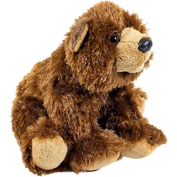 Wild Republic Мягкая игрушка republic CuddleKins Бурый медведь, 18 см
