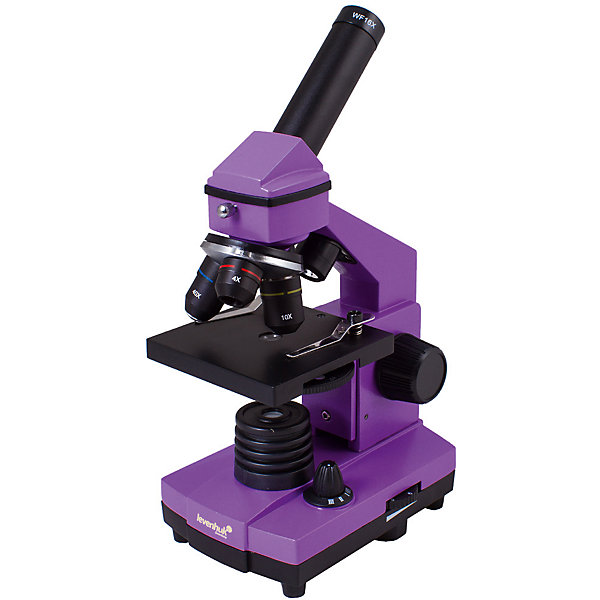 Микроскоп Levenhuk Rainbow 2L PLUS Amethyst\АметистМикроскопы<br>Характеристики товара:<br><br>• материал: металл, пластик<br>• увеличение: до 640 крат<br>• набор для опытов в комплекте<br>• прочный металлический корпус<br>• подсветка: светодиод<br>• лампа работает от батареек 3хАА<br>• комплектация: микроскоп, объективы: 4х, 10х и 40хs, окуляр: WF16x, Предметный столик с зажимами, диск с диафрагмами, конденсор, встроенные нижний и верхний осветители на светодиодах, сетевой адаптер (питание 220 В, 50 Гц), инструкция по эксплуатации и гарантийный талон, пинцет, инкубатор для артемии, микротом, флакон с дрожжами, флакон со смолой для изготовления препаратов, флакон с морской солью, флакон с артемией (морским рачком), 5 готовых образцов и 5 чистых предметных стекол, пипетка, пылезащитный чехол<br>• страна бренда: США<br>• страна производства: КНР<br><br>Собственный микроскоп - это отличный способ заинтересовать ребенка наукой и привить ему интерес к учебе. Эта модель микроскопа была разработана специально для детей - он позволяет увеличивать препарат в 640 крат, с помощью этого дети могут исследовать состав и структуру разнообразных предметов, веществ и организмов. Благодаря стильному дизайну этот микроскоп отлично вписывается в интерьер!<br><br>Оптические приборы от американской компании Levenhuk уже успели зарекомендовать себя как качественная и надежная продукция. Для их производства используются только безопасные и проверенные материалы. Такой прибор способен прослужить долго. Подарите ребенку интересную и полезную вещь!<br><br>Микроскоп Levenhuk Rainbow 2L PLUS Amethyst\Аметист от известного бренда Levenhuk (Левенгук) можно купить в нашем интернет-магазине.<br>Ширина мм: 230; Глубина мм: 150; Высота мм: 370; Вес г: 1840; Возраст от месяцев: 60; Возраст до месяцев: 2147483647; Пол: Унисекс; Возраст: Детский; SKU: 5435275;