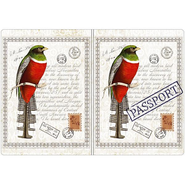 Обложка для паспорта Птица, Феникс-ПрезентОбложки на паспорт<br>Обложка для паспорта Птица, Феникс-Презент <br><br>Характеристики:<br><br>• оригинальный дизайн<br>• высокая прочность<br>• размер: 13,3х19,1 см<br>• материал: ПВХ<br><br>Обложка для паспорта Птица защитит ваши документы от намокания, а также подчеркнет оригинальность стиля. Обложка выполнена из прочного поливинилхлорида, устойчивого к износу. На обложке изображена красивая птичка. Такая красивая обложка всегда будет радовать глаз!<br><br>Обложку для паспорта Птица, Феникс-Презент вы можете купить в нашем интернет-магазине.<br>Ширина мм: 133; Глубина мм: 191; Высота мм: 50; Вес г: 35; Возраст от месяцев: 168; Возраст до месяцев: 2147483647; Пол: Унисекс; Возраст: Детский; SKU: 5449607;